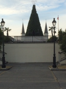 Cathedral with Tree